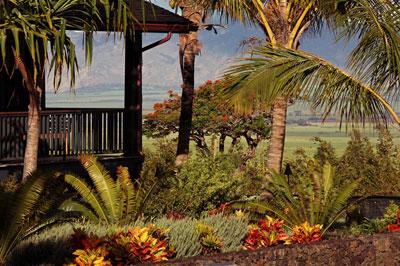 Maui Womens Retreat