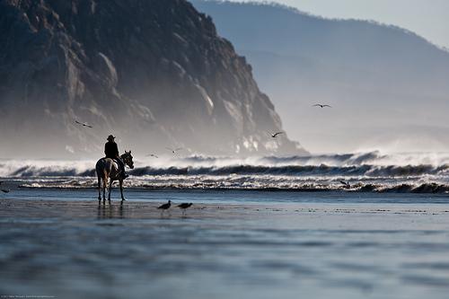 Man at waters edge